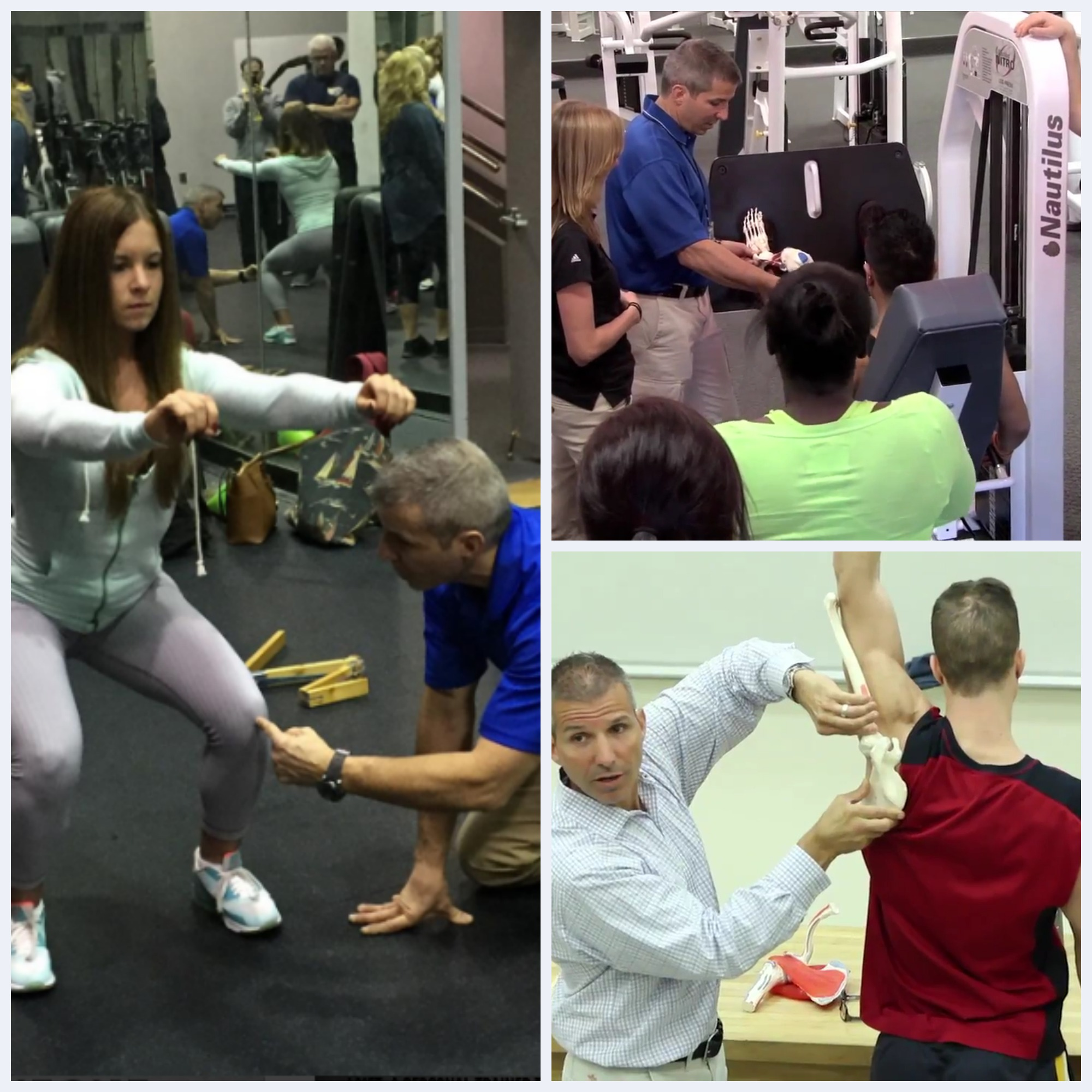 Personal Trainer/Health Fitness Instructor Certificate Course Modules